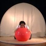 palla-pallina
