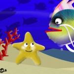 stellina-di-mare-2